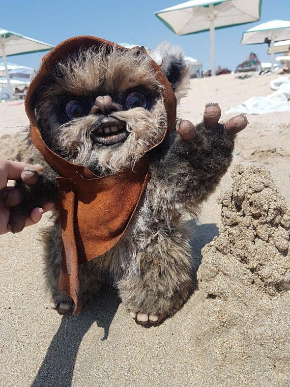 Small Ewok Ewok This Or That Questions New Baby Products