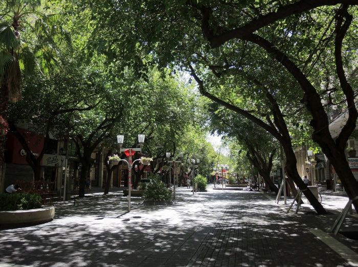 Tree lined streets in downtown Mendoza
