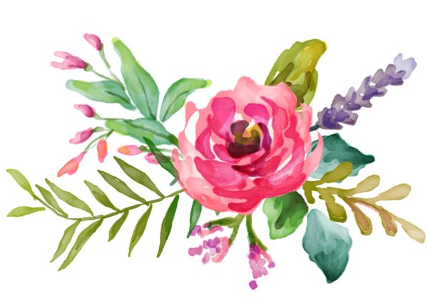 fleurs,tube,flowers,png                                                                                                                                                                                 Plus