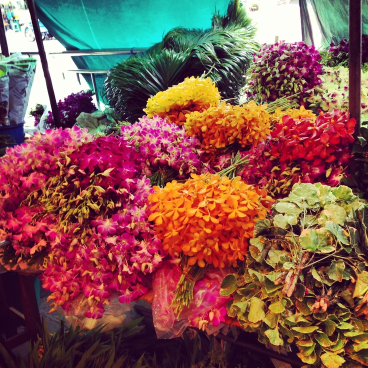 Amazing orchids from Bangkok Flower market like color chain