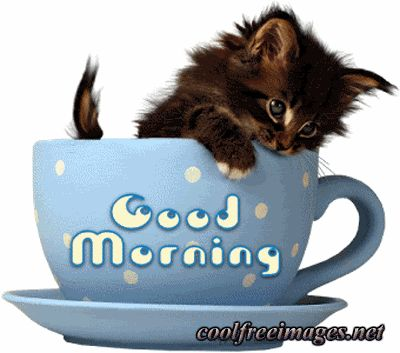 Good Morning Comments Facebook Myspace Orkut Graphics Glitters Styles