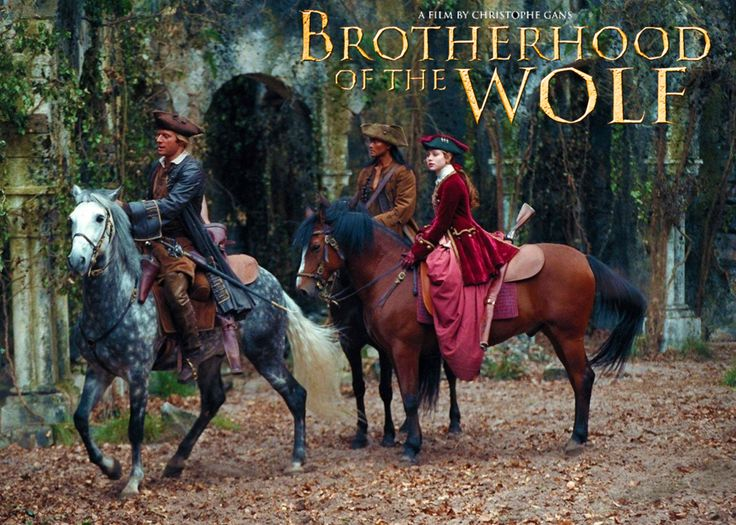 BROTHERHOOD OF THE WOLF -  Do you believe in werewolves? No? Well in France there was a creature who killed many women and children - this movie recounts the events of that time.