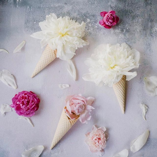 As temperatures hit decidedly summery levels, what better way to celebrate than ice cream? 🌸 This arrangement is inspired by the incomparable @birgittetheresa, although I initially got the idea of playing around with ice cream cones from @kellysnapshappy. 🌸 #rosenthalflowerupyourlife