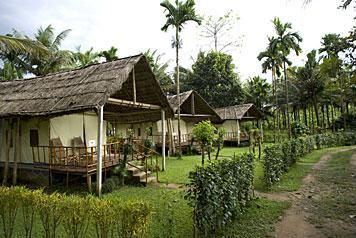 Cottage tents at Hornbill Camp, Kerala, India