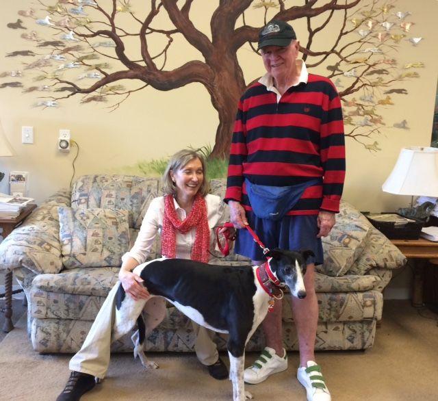 Octane with her new family, Diane and Braxton. Congratulations to this new #fureverfamily! #adoptaretiredracer #gpi #greyhound #greyhoundpetsinc #greyhoundsmakegreatpets