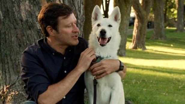 Kyra   Épisode 1   Animal cherche compagnie   CASA