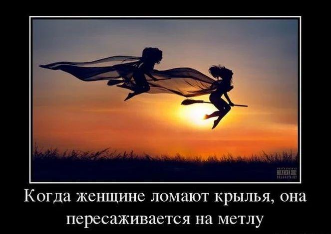 крылья приколы картинки как никому