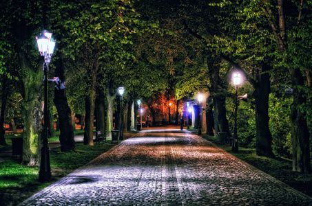 #Night #Lights #Lane #Alley