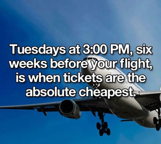 "Good Tip ""I've also heard that we should be clearing our browser cache before searching for flights – that way the airlines don't know you've already been searching because apparently when they do they hike their prices up.""  Ton's more tip sites for finding the cheapest flights here: https://www.pinterest.com/explore/cheapest-flights/ and here: https://www.pinterest.com/explore/flight-tickets/"