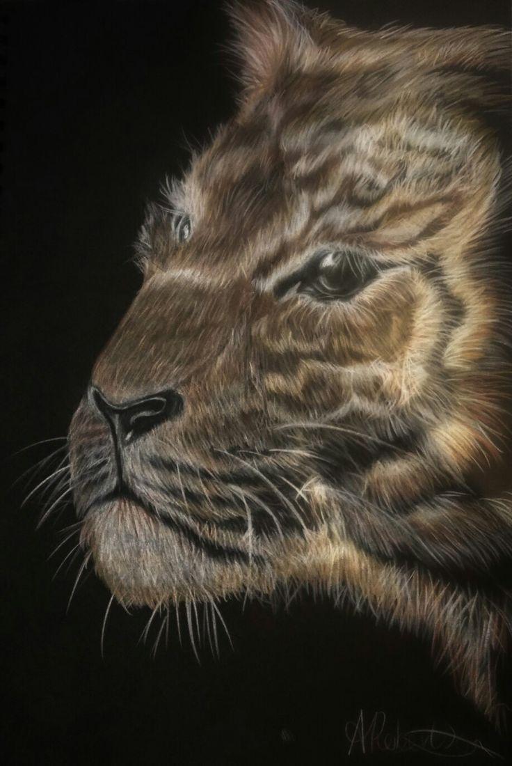Tiger sketch. Black paper art
