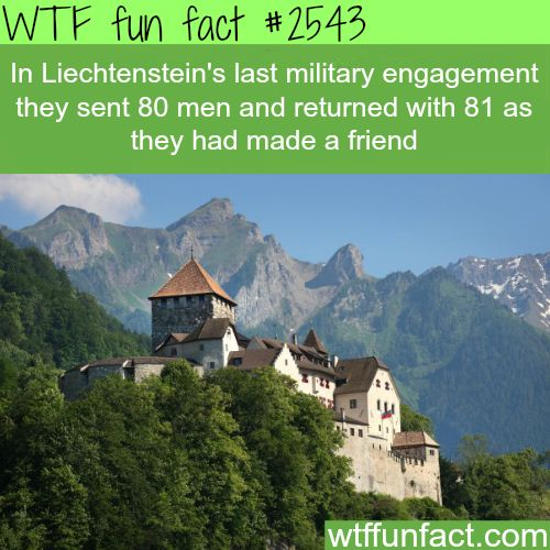 Liechtenstein army wtf fun facts wow love this guys for Fun facts about countries around the world