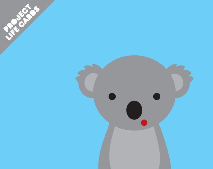 Koala Art And Design : Best images about koala on pinterest fun gif vintage