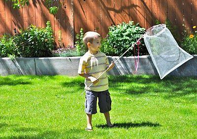 Homemade Butterfly Net from Little Birdie Secrets | Skip To My Lou #happyfamilysummer