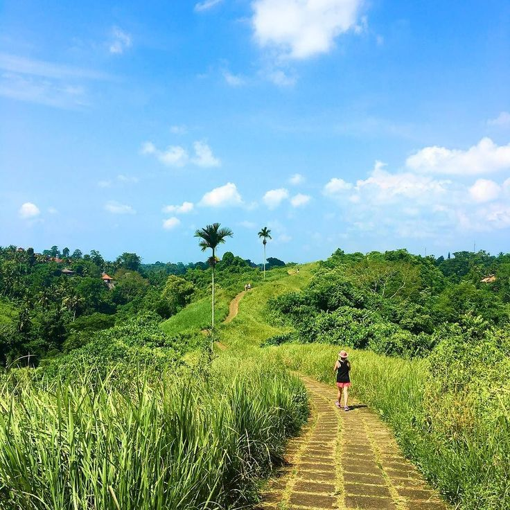 [New blog post! Link in Bio] When you're out walking in the sun in South East Asia always remember to apply sunblock! It was so hot and humid in Bali when we trekked the Campuhan Ridge Walk in Ubud. __________________________ Did you know that the name Ubud (pronounced oo-bood) originated from the Balinese word Ubad meaning medicine? __________________________ : iPhone 6S  #bali #TravelAsia #thebaliguru #Ubud #hikingtrail