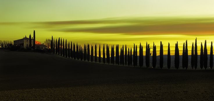 Poggio Covili at Sunrise.Tuscany.CF016728  Hello everyone,  Thank you so much for your visit and support ..  All Right Reserved. Pictures can not be used without explicit permission by the creator . Fabrizio Massetti.