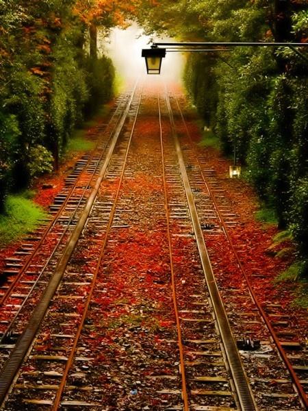 Pennsylvania..Fall Leaves, Paths, Nature, Autumn, Training Track, Pennsylvania, Places, Roads, Railroad Track