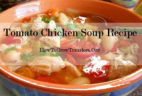 http://howtogrowtomatoes.org/simple-tomato-recipes/  chicken tomato recipes. Click the link for instructions.