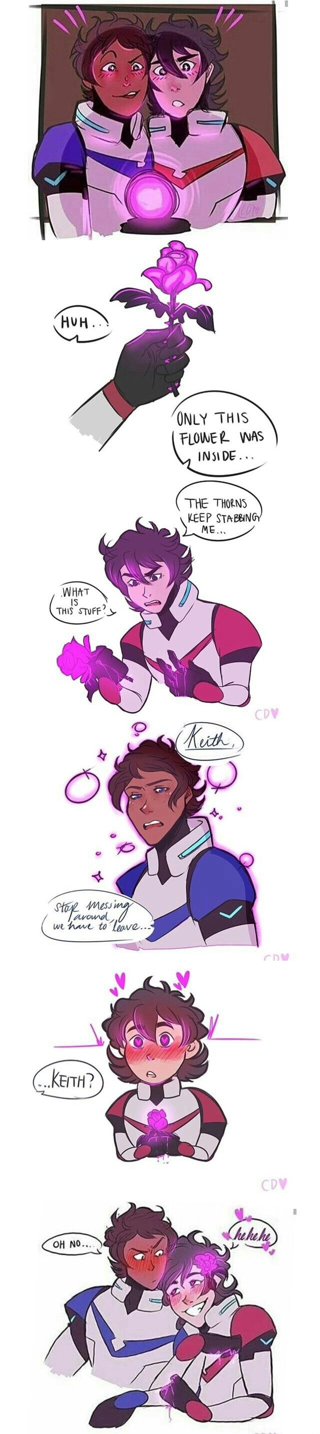 Klance- Love flower part 1 (art is by CaseyDambro, btw I made up the title)