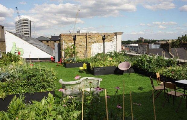 urban farming - roof garden Arnhem - food - architecture - design