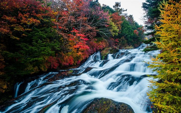 Download wallpapers autumn, mountain river, waterfall, stones, forest, red trees