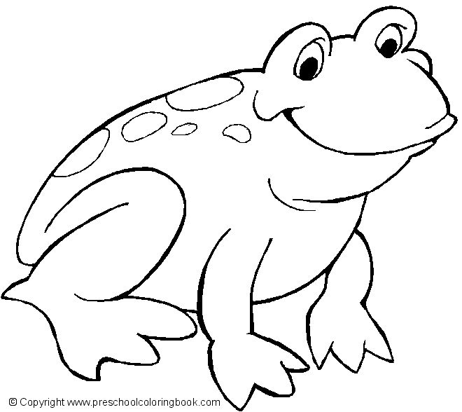 Free Printable Smiling Frog Coloring Page