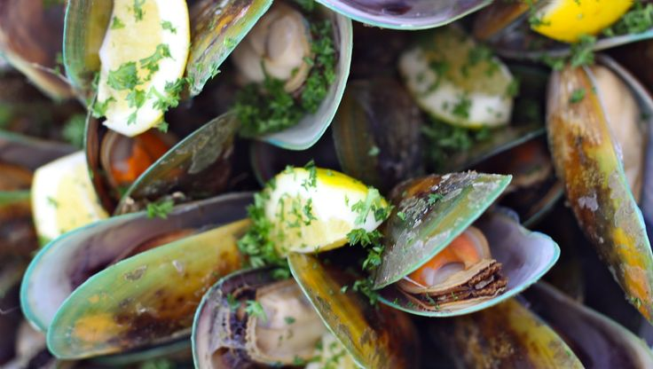 Greenshell mussels freshly steamed on our Greenshell Mussel Cruise in Marlborough #greenshellmusselcruise www.marlboroughtourcompany.co.nz