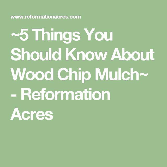 ~5 Things You Should Know About Wood Chip Mulch~ - Reformation Acres