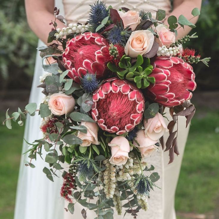 Proteas , roses and blue gum. Love this bouquet ? Checkout the full blog post @weddingflowersetc.