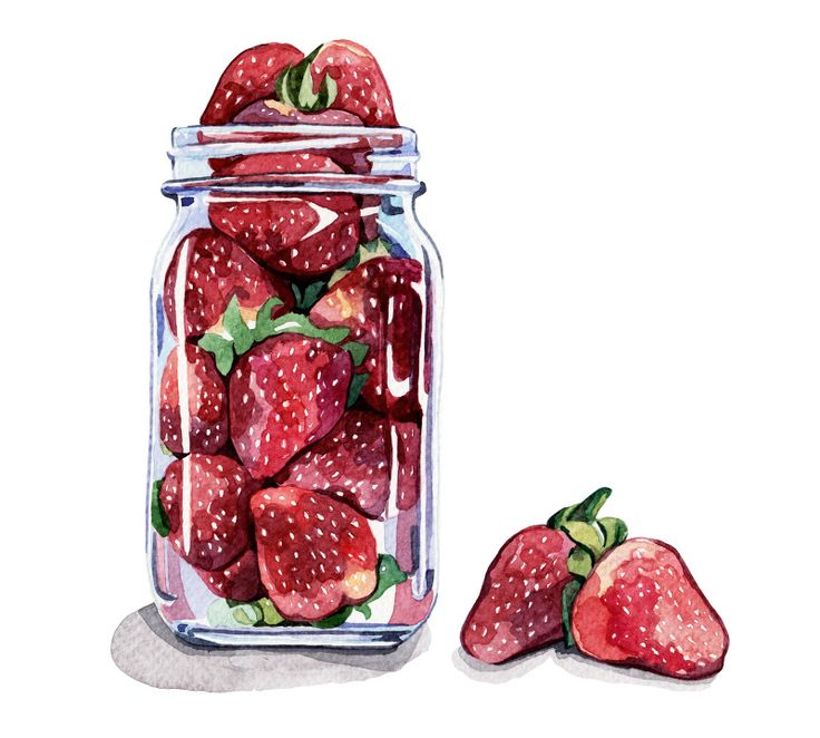 Strawberries In a Jar - Holly Exley Illustration