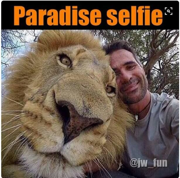 See yourself in PARADISE ?
