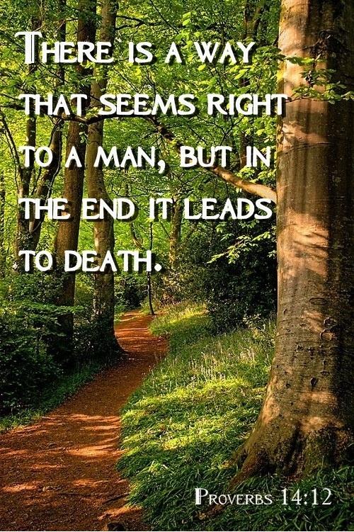 PROVERBS 14:12                                                                                                                                                                                 More