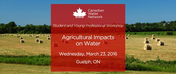 Guelph SYP Regional Workshop Homepage Banner VR1