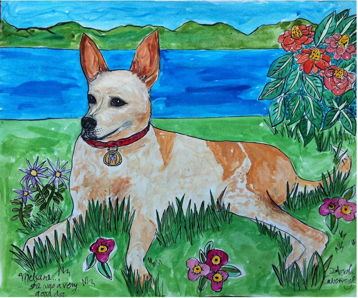 A grand old man.  Dignified and powerful.  This is a great dog.  More info at http://www.DeborahCavenaugh.com