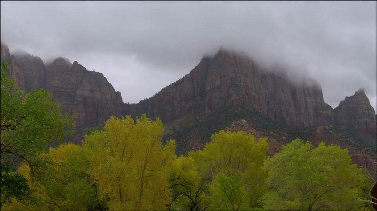 La vegetación tiene un 30% de influencia en las precipitaciones - https://www.meteorologiaenred.com/la-vegetacion-30-influencia-las-precipitaciones.html