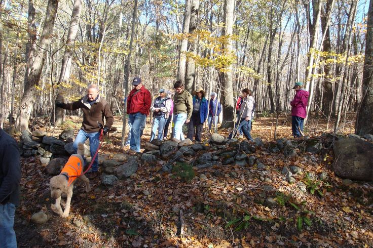 The Oct 23, 2016 guided hike on the newly white blazed Langhammer trail on Ashford town land.