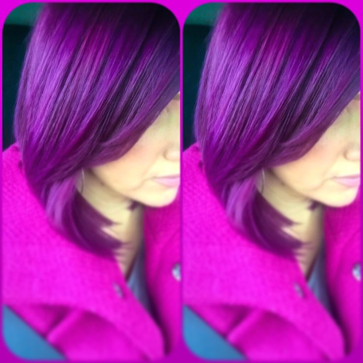 15 Best Images About Orchid Ruby Violet On Pinterest