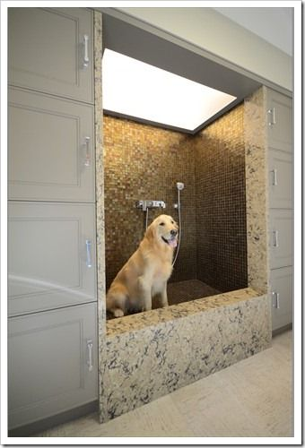I'm pinning this because it actually takes into account what the chore of washing a dog is like. The raised shower floor means you (the cleaner) do not have to break your back as you carry out the routine dog cleaning. I think for each area and task...how you feel is important...here for example, you may want a toe space like the cupboards have so you can step a little closer without discomfort.