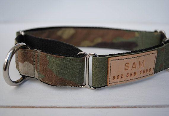 Martingale collar upgrade, martingale dog collar, dog training collar, trendy dog collar, grey hound collar, martingale