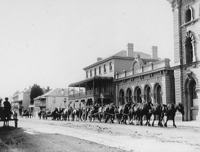 High Street, West Maitland 1899