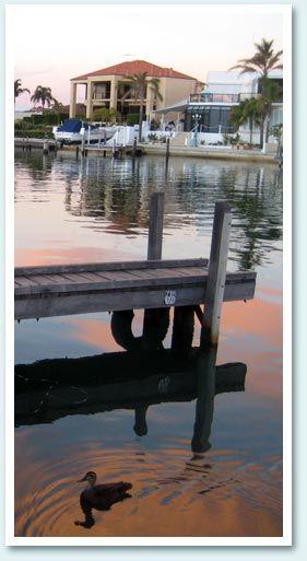 Port Sails Canal Villa   Home   Mandurah   Holiday Rental   Accommodation   Jetty   Dolphins