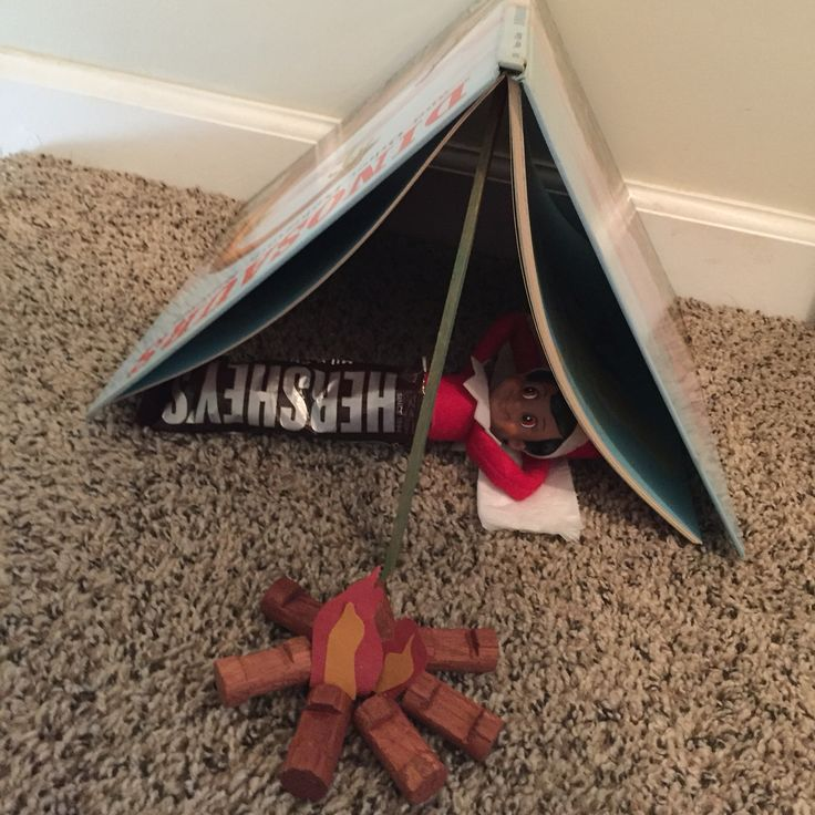 Elf on the Shelf- Camping