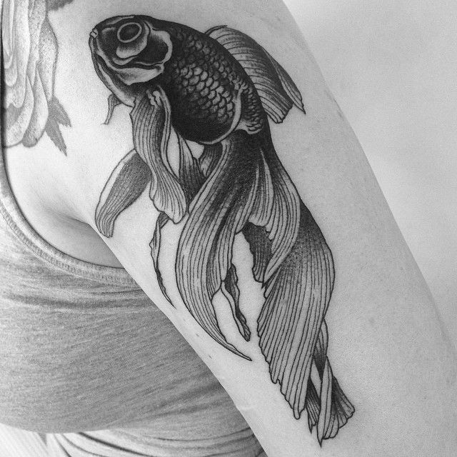 black goldfish by Super Timor (instagram: timorsuper) at AKA Berlin