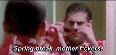 """There is no one one on this planet who doesn't love the idea of Spring Break. 