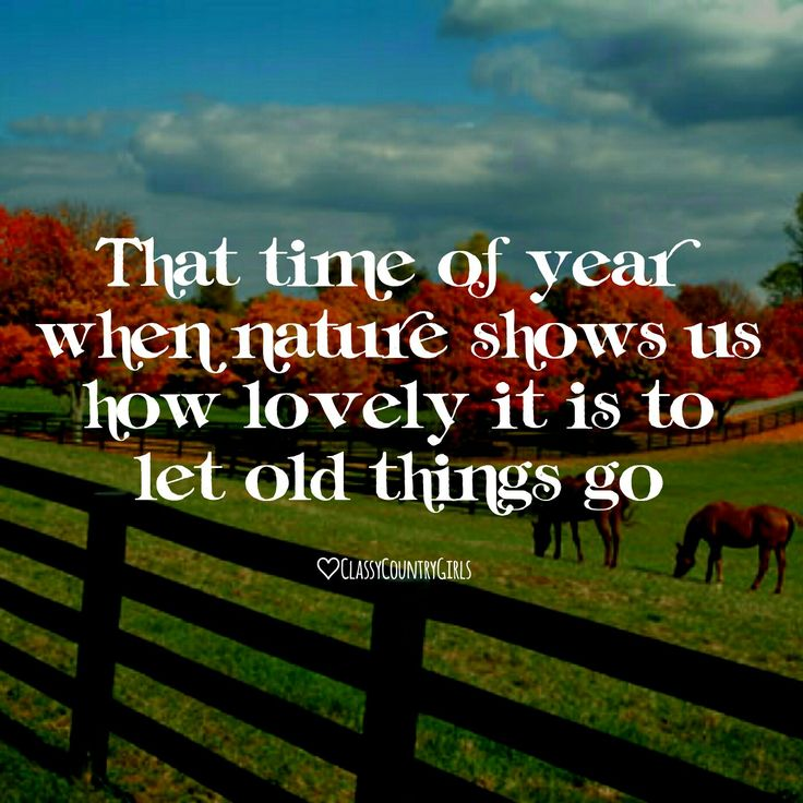 That time of year when nature shows us how lovely it is to let go of old things, fall quotes, things to love about fall, country girl quotes