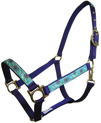Peacock halter. Love this. Find it on Chicks Discount Saddlery.