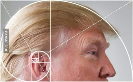 Donald Trump's hair is the Golden Spiral