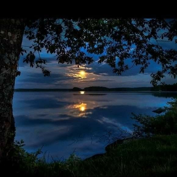 Pin By Dorothy Gerlach On Parfou In 2020 Night Skies Beautiful Nature Nature
