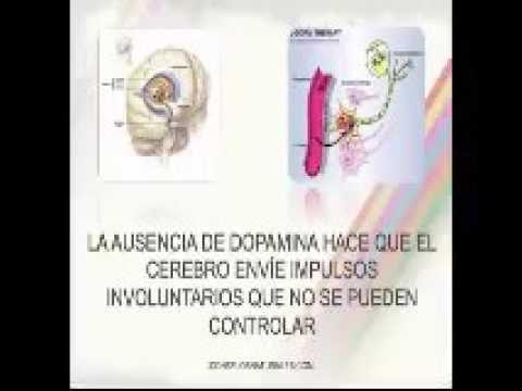 Mucuna Pruriens Tratamiento Natural Parkinson
