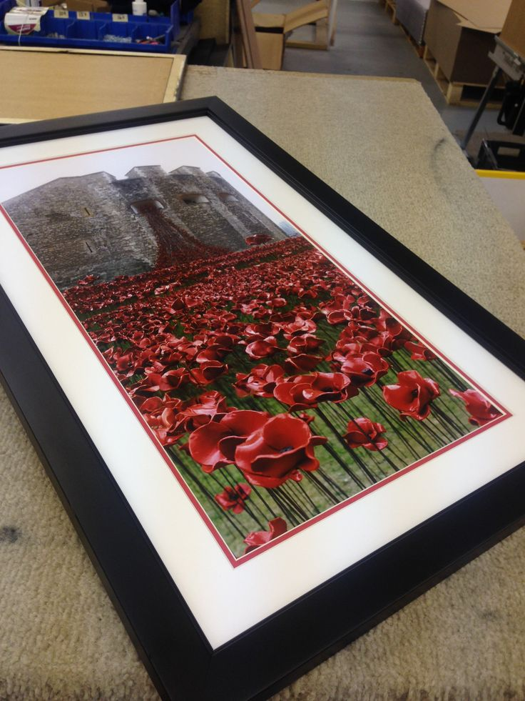 We are making a tailored poppy display today! Did you know from every ceramic poppy framed, we donate £25 to the Royal British Legion?