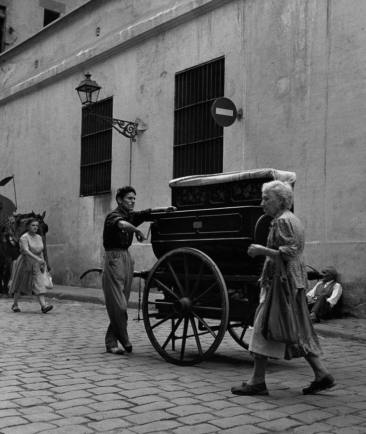 Organillero 1950. Francesc Catala Roca